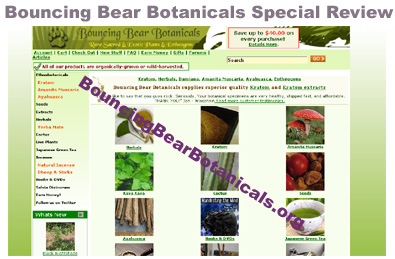 Bouncing Bear Botanicals Logo
